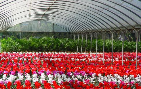 Accesorios para instalaciones agrícolas
