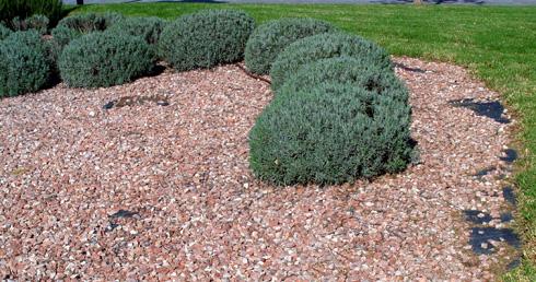 Mallas antihierba para jardinería