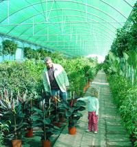 Mallas de sombreo en el Centro de Jardinería