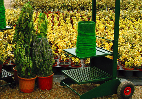 Máquinaria para embolsado de planta ornamental en maceta