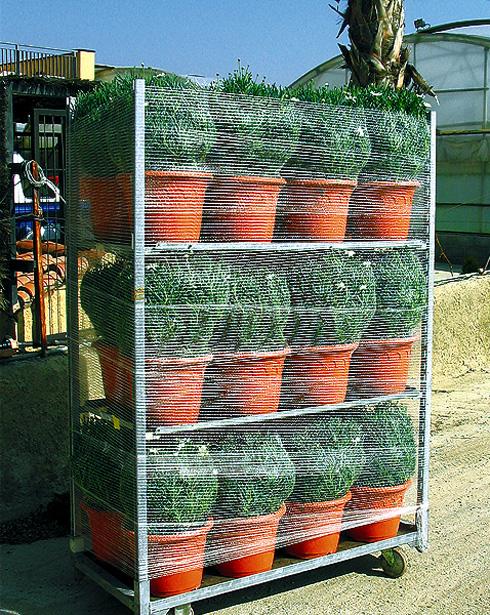 Mallas transpirables para envolver pallets Palmet